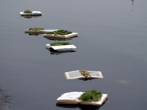Six open books floating on gray water, with moss and plant matter blooming from their white pages.