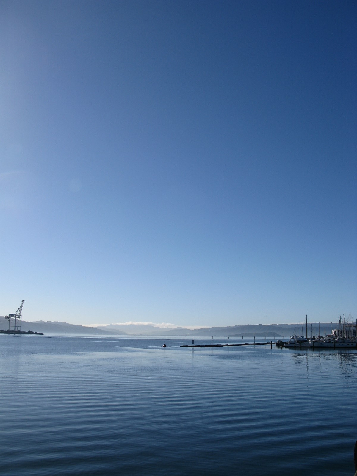 Photograph. Blue upon blue: a clear blue early-morning sky vaults above calm blue ocean in a harbourfront, gently rippling. Wharves peek in at the corners, and the horizon ripples with distant hills and a silver-lined cloudbank.