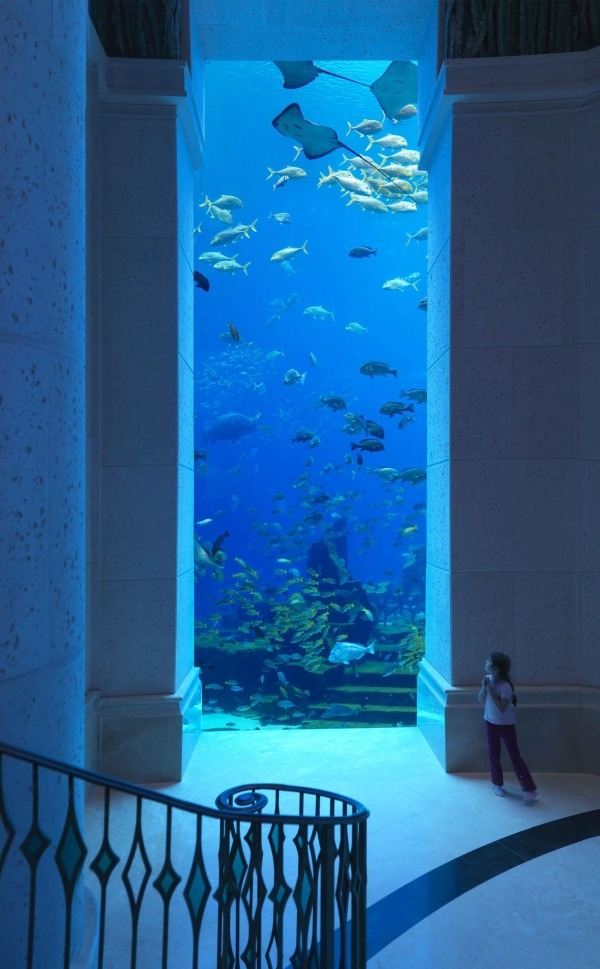 Photograph. An intricately scrolled bannister slopes down to a white landing dominated by a floor-to-ceiling glass window, flanked by two blocky columns. Beyond this window is an undersea wonderland. The view teems with reef fish, while several stingrays patrol above them. Standing at the side of this window is a young girl, wearing a white shirt and black pants and a ponytail. Hands clasped together, she gazes into this wondrous sight.