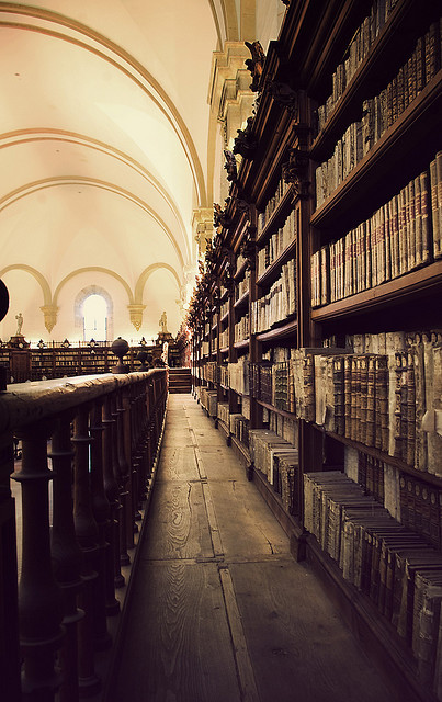 Photograph. We are looking down the aisle of a library. On one hand is the wooden balustrade; on the other side are rows of old encyclopaedias and folios, all in tasteful set. The aisle stretches down towards a reading room filled with more shelves, its dome curving gracefully overhead. All is suffused in sepia and cream.