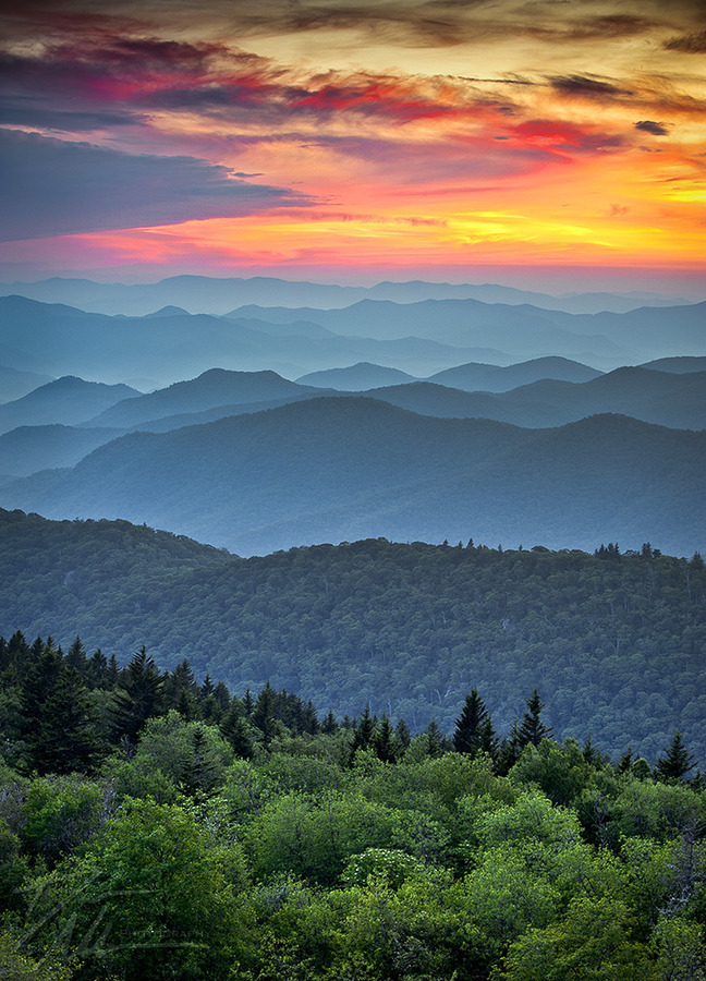 Photograph of sunset over the Blue Ridge Mountains in the Appalachias. In the foreground, verdant green trees stand on a hillside. Receding into the distance are rank upon rank of forested mountains, blue in the twilight. Above the land, narrow bands of cloud recede to the left, leaving behind a fiery sunset.